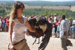 Bezoek een spectaculaire vogelshow met panoramisch uitzicht
